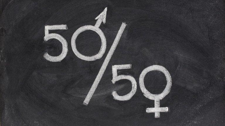 Igualdad de género: el Gobierno estableció que las sociedades tienen que tener la misma cantidad de hombres y mujeres en sus directorios